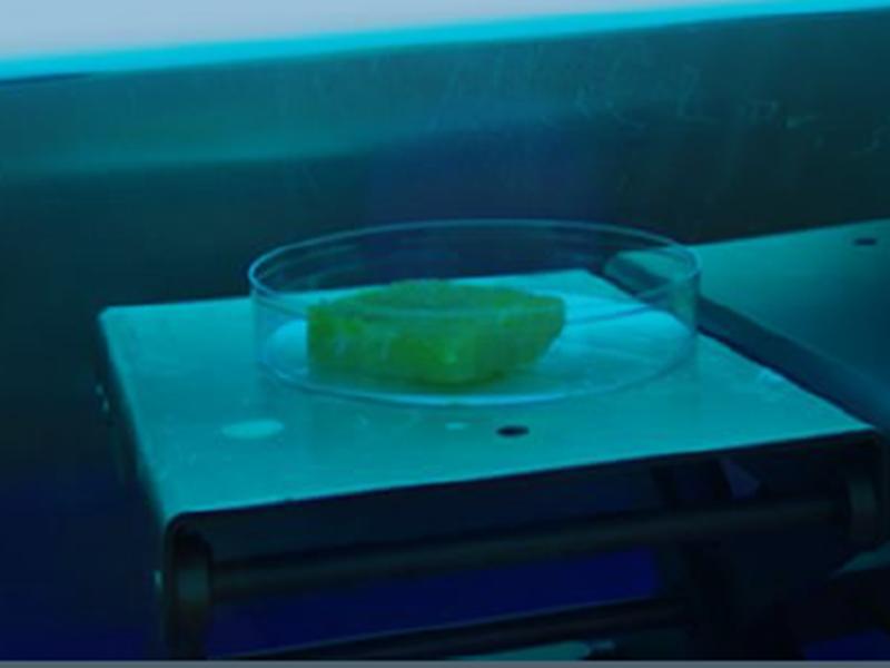 Det er oppnådd lovende resultater ved utprøving av metoder for bekjempelse av listeria ved å bruke UV-belysning som reduserer forekomst, i kombinasjon med et middel som hemmer vekst