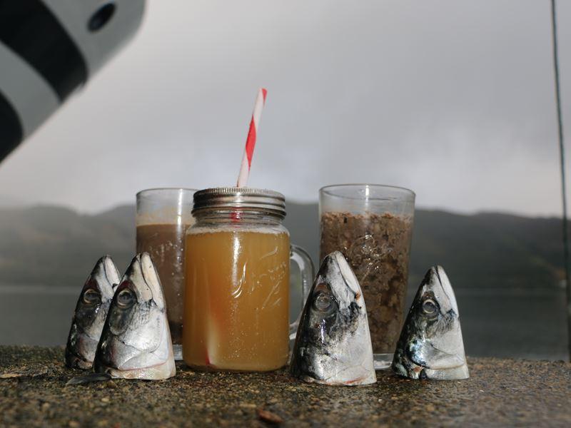 Olje produsert av restråstoff fra makrell har vist seg å ha god og lagringsstabil kvalitet og er godt egnet til humant konsum