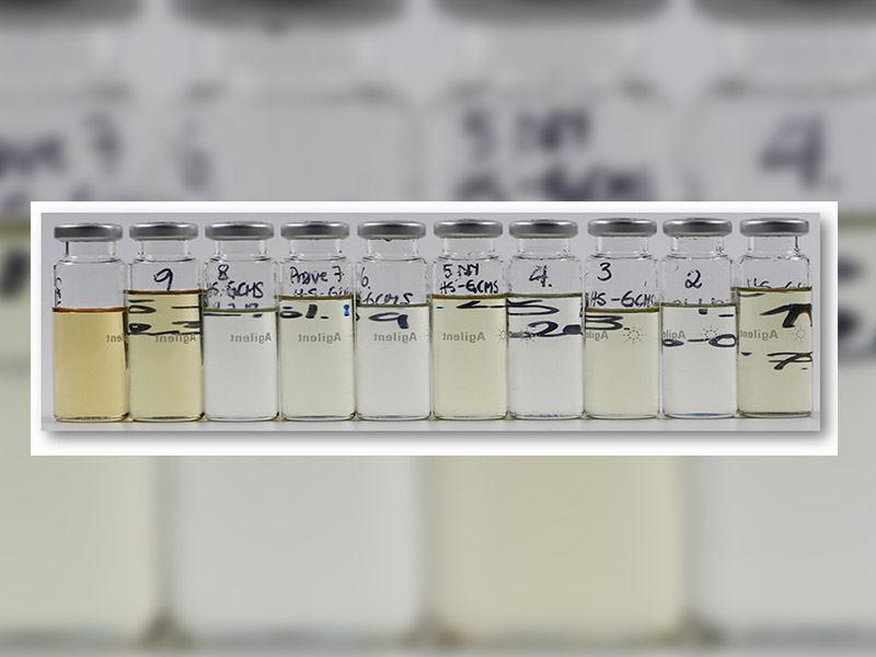 Det er blitt utviklet metode for raffinering av makrellolje tilnærmet uten lukt og smak til humant konsum