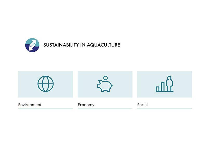Bærekraftportalen for havbruk er blitt videreutviklet og finnes nå på engelsk
