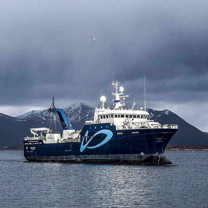 Molnes: System for ombordpumping, restitusjon og levendelagring før elektrobedøving og bløgging.